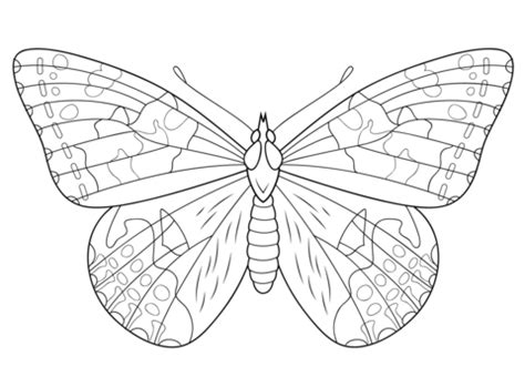painted lady butterfly coloring page  printable coloring pages