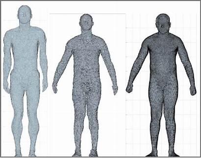 Anatomy Avatar Male Subject Mesh Standard Representations