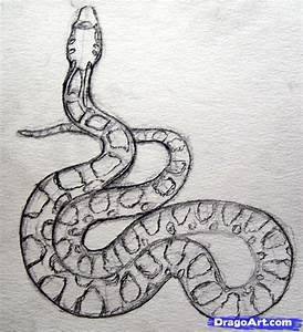 Snake Drawing On Pinterest Snake Art Aboriginal Art And