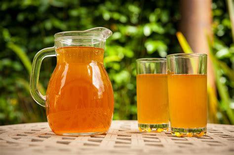 Kombucha, La Bebida Milenaria De La Inmortalidad