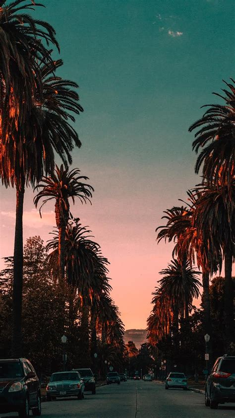 20 Beautiful Los Angeles Iphone X Wallpapers Tapety