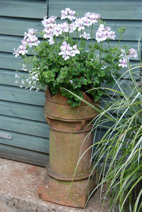 Garden Chimney by An Chimney Pot Is Now A Beautiful Planter Created By