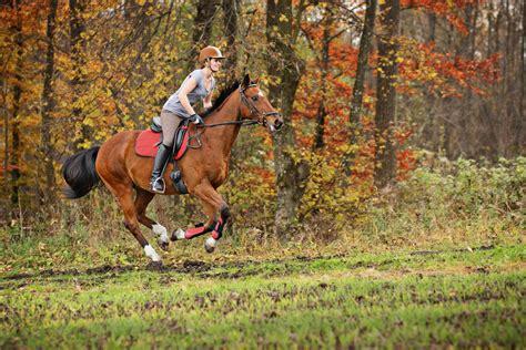 horse alone misbehaving ride