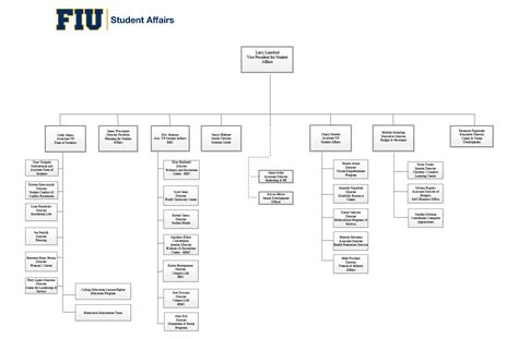 organization chart student affairs florida international university