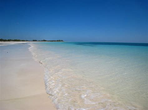 gold rock grand bahama island bahamas address reef