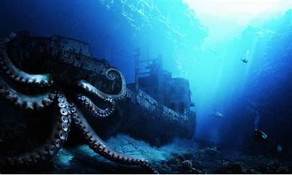 Sea Deep Under Discovered Abyss Animal Animals