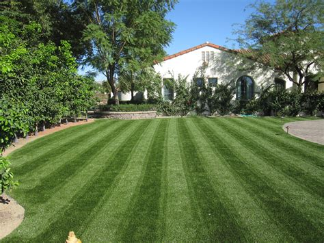 cost of lawn synthetic grass artificial turf phoenix arizona scottsdale arizona custom putting greens for