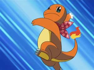 Image Team Go Getters Charmander Metal Claw