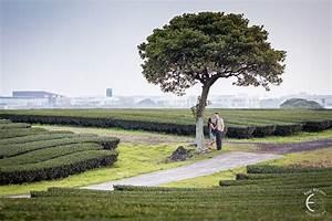 Jeju Engagement