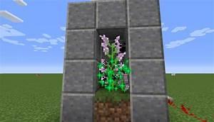 Hohe Pflanzkübel Für Rosen : farmer f r 2 bl cke hohe blumen in minecraft bauen minecraft ~ Whattoseeinmadrid.com Haus und Dekorationen
