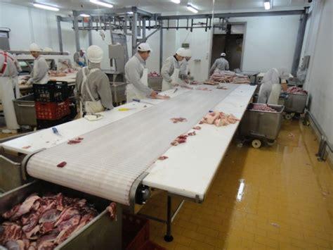 meat cutting conveyors industries citconveyors