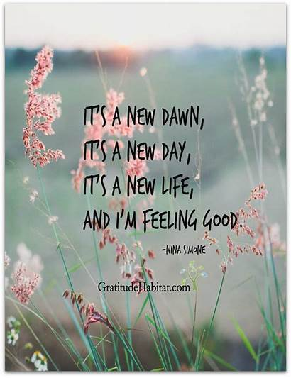 Happy Choose Happiness Quotes Feel Inspirational Dawn