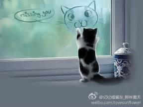 i miss my cat i miss you cat meme