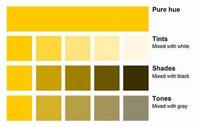 Mixing Shades Hue Using Colours Theory Tint