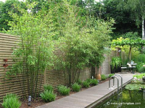 Garten Bepflanzung Sichtschutzgestalten Mit Holz Metall