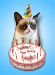 grumpy cat birthday 10 best images about grumpy cat on birthdays