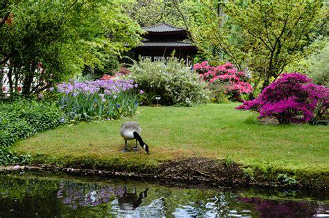 Fotos  Japanischer Garten In Leverkusen