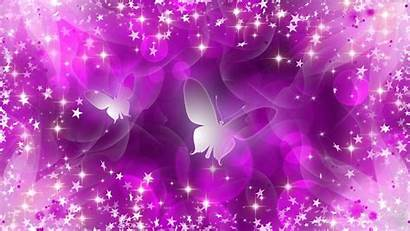 Purple Butterflies Butterfly 1080p Wishes Were Wallpapers