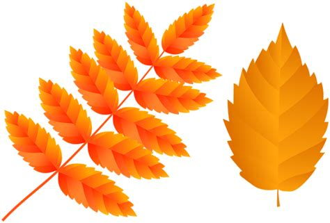 orange fall leaves png clip art image gallery
