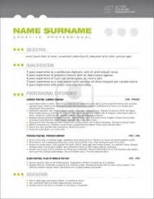 professional resume template best photos of professional cv template free professional cv template free
