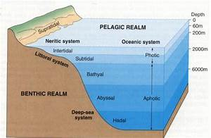 Introduction To The Oceans  Lesson 0017