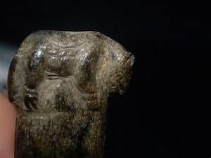 Sibirya'da 2,000 Yıllık Köpek Mezarlığı Bulundu   Arkeofili