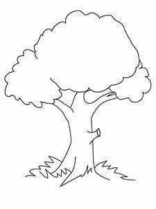 Baum Malvorlagen Kostenlos Zum Ausdrucken Ausmalbilder