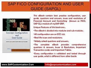 Sap Fico Configuration And User Guide  Sapgl