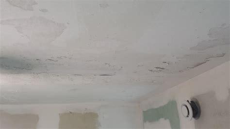 refaire plafond salle de bain