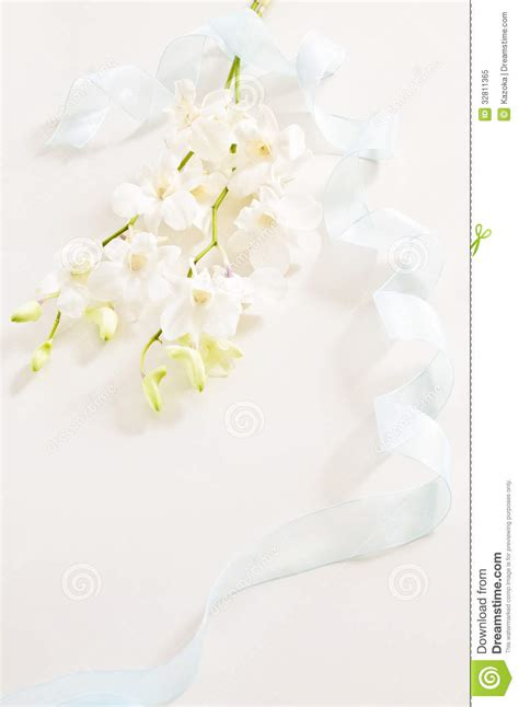 image  funeral stock image image  flower clean