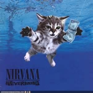 cat photo album kittens invade nirvana album covers