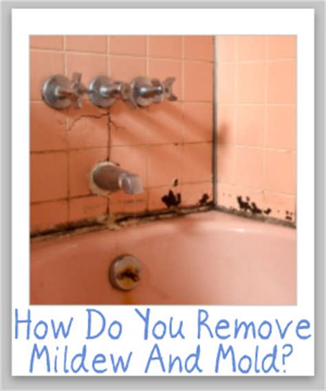 tips  cleaning removing mildew mold  hard surfaces