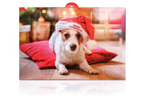 letzte minute die top adventskalender fuer hunde urbandog