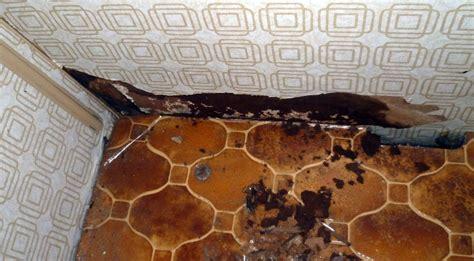 wände trocknen nach wasserschaden wasserschaden an einem b 252 rstner 460 1992 wohnwagenforum