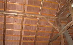 Dach Dämmen Ohne Unterspannbahn : bau de forum dach 16248 dach undicht bei schneegest ber ~ Lizthompson.info Haus und Dekorationen