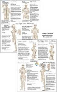 Acupuncture Meridian Points Chart