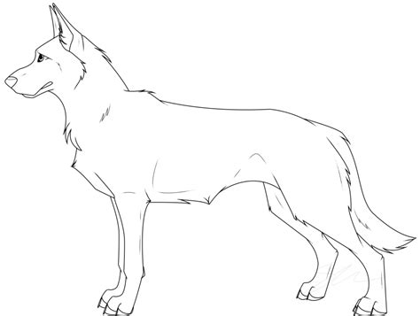 drawn german shepherd female pencil   color drawn