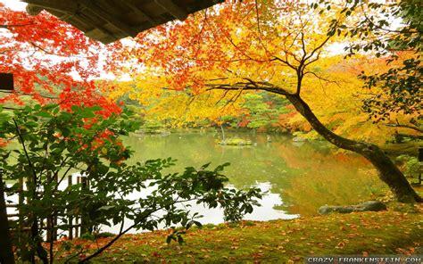 beautiful autumn wallpapers  seasonal crazy frankenstein