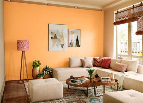 roasted sesame house paint colour shades  walls