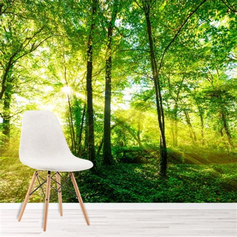 green trees wall mural forest nature wallpaper living room