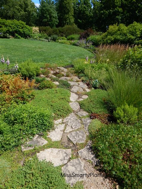 gravel garden paths the perfect garden path miss smarty plants