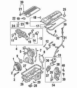 2004 Bmw 325i Engine Diagram