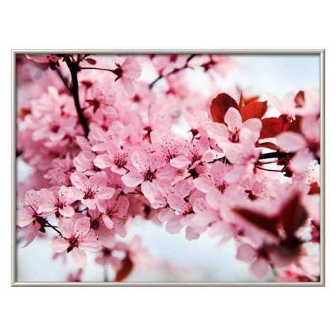 Are you looking for parmesan cherry images design for wall decor? Japanese Cherry Blossom Wall Art - Wall Art at Hayneedle