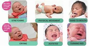 Height And Weight Chart For Babies Calculator Baby 39 S Hunger Cues How To Identify Them