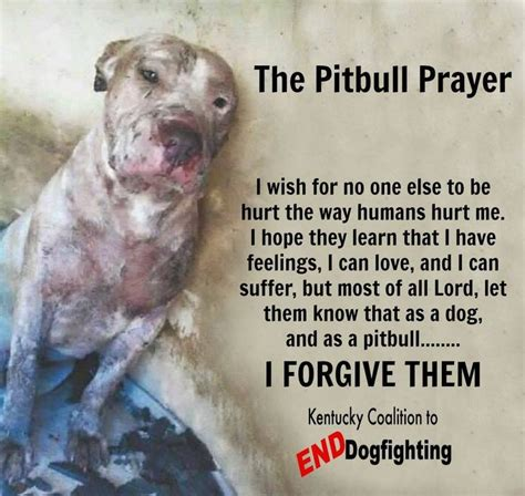 162 Best Images About Pitbull Quotes On Pinterest. Famous Quotes Us Presidents. Nature Quotes About Fall. Instagram Education Quotes. Instagram Quotes About Dogs. Relationship Quotes In Urdu. Best Friend Quotes For Girls. Song Quotes Goodbye. Humor Witty Quotes