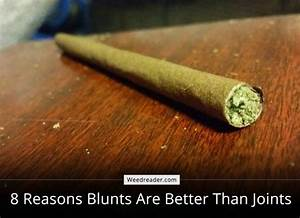 8 Reasons Blunts > Joints - Weed Reader