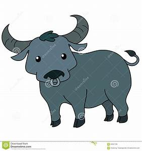 Cute Thai Buffalo Standing On White Background Stock ...