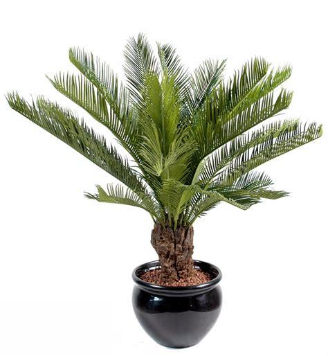 palmier exterieur pas cher palmier artificiel cycas tronc plante int 233 rieur ext 233 rieur h 90 cm vert