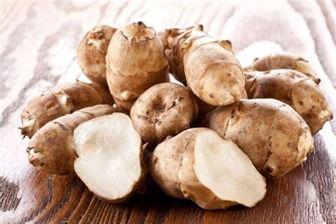 jerusalem artichoke heirloom jerusalem artichoke varieties organic gardening mother earth news