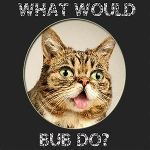What would BUB ... Mum And Bub Quotes
